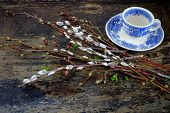 foto of willow  - Willow branches with catkins on an old vintage wood from above - JPG