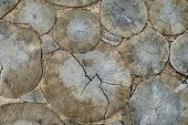 Aged circles on a wood