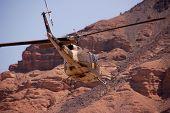 Desert Helicopter