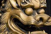 Chinese Dragoon