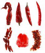 diferentes tipos de chiles rojos, sobre blanco, super macro, super size