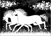 foto of white horse  - Couple of white running horses design vector - JPG