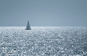A small boat sailing on a sunny morning , toned photo