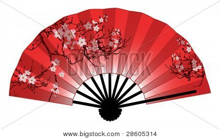 Picture Or Photo Of Japanese Fan