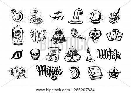 Vector Hand Drawn Illustration Of