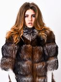 Woman Makeup And Hairstyle Posing Mink Or Sable Fur Coat. Fur Fashion Concept. Winter Elite Luxury C poster