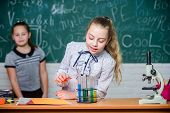 Girls Working Chemical Experiment. Natural Science. Educational Experiment. School Classes. Biology  poster