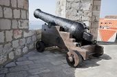 Fortress Cannon