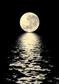 Golden Moon belleza