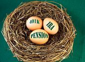 picture of stability  - Nest with eggs and the words 401k IRA and Pension for retirement or future financial stability - JPG