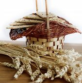 Basket with biscuit and wheat