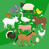 Set Of Farm Domestic Animals Round Pattern Vector Illustration. Collection Of Cute Pet Animal. Carto poster