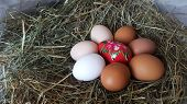 Eggs In Hay. Preparation For Easter. Farm Lifestyle In The Countryside, Fresh Eggs From The Farm In  poster