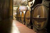 Argentina Wine Cellar