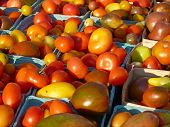 Heirloom tomatoes in baskets at farmers' market