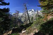 Corsica Mountains