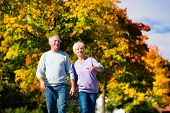 Man and woman, senior couple, having a walk in autumn or fall outdoors, the trees show colorful foliage