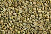 the green coffee beans background