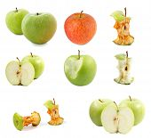 apples collection. Set of apples and apple core. isolated on white background.