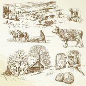 rural landscape, agriculture, farming