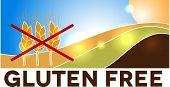 Gluten free design, landscape