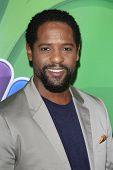 LOS ANGELES - JUL 27:  Blair Underwood at the NBC TCA Summer Press Tour 2013 at the Beverly Hilton H