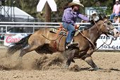 Barrel Racing - Britanny Pozzi-pharr