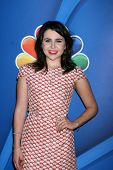 LOS ANGELES - JUL 27:  Mae Whitman at the NBC TCA Summer Press Tour 2013 at the Beverly Hilton Hotel