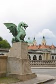 Dragon Sculpture On Dragon Bridge View  Cathedral Saint Nicholas Old Town On Ljubljanica River Ljubl