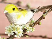 Closeup Of A Bird On A Blooming Plum-tree Branch (not A Real Bird)