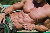 Bodybuilder's Torso, Pecs, Abs, Leaning On A Side
