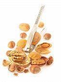 Nuts_vert