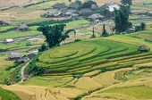 Terraced Fields On The Hill, Village In The Distance, Mu Cang Chai District, Yen Bai Province, Vietn
