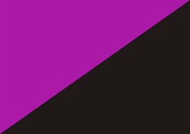 stock photo of anarchists  - anarchist feminism flag or anarcho feminism computer generated - JPG