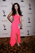Theresa Castillo at the Daytime Emmy Nominees Reception presented by ATAS, Montage Beverly Hills, CA