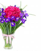 hortensia and iris flowers bouquet in vase