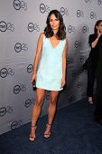 Jordana Brewster at the TNT 25th Anniversary Party, Beverly Hilton Hotel, Beverly Hills, CA 07-24-13