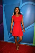 Joy Bryant at the NBC Press Tour, Beverly Hilton, Beverly Hills, CA 07-27-13