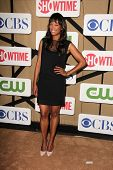 Aisha Tyler at the CBS, Showtime, CW 2013 TCA Summer Stars Party, Beverly Hilton Hotel, Beverly Hills, CA 07-29-13