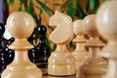 Chessman Horse Closeup.