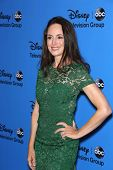 Madeleine Stowe at the Disney/ABC Summer 2013 TCA Press Tour, Beverly Hilton, Beverly Hills, CA 08-0