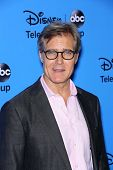 Henry Czerny at the Disney/ABC Summer 2013 TCA Press Tour, Beverly Hilton, Beverly Hills, CA 08-04-1