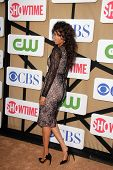 Tyra Banks at the CBS, Showtime, CW 2013 TCA Summer Stars Party, Beverly Hilton Hotel, Beverly Hills, CA 07-29-13