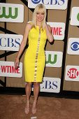 Anna Faris at the CBS, Showtime, CW 2013 TCA Summer Stars Party, Beverly Hilton Hotel, Beverly Hills, CA 07-29-13