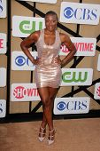 Aisha Hinds at the CBS, Showtime, CW 2013 TCA Summer Stars Party, Beverly Hilton Hotel, Beverly Hills, CA 07-29-13