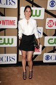 Robin Tunney at the CBS, Showtime, CW 2013 TCA Summer Stars Party, Beverly Hilton Hotel, Beverly Hil