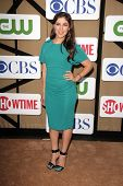 Mayim Bialik at the CBS, Showtime, CW 2013 TCA Summer Stars Party, Beverly Hilton Hotel, Beverly Hil