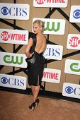 Sarah Michelle Gellar at the CBS, Showtime, CW 2013 TCA Summer Stars Party, Beverly Hilton Hotel, Be