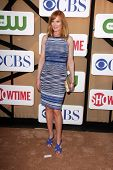 Marg Helgenberger at the CBS, Showtime, CW 2013 TCA Summer Stars Party, Beverly Hilton Hotel, Beverl