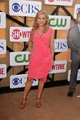 Jessica Collins at the CBS, Showtime, CW 2013 TCA Summer Stars Party, Beverly Hilton Hotel, Beverly